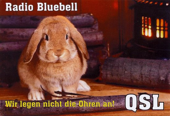 Radio Bluebell QSL